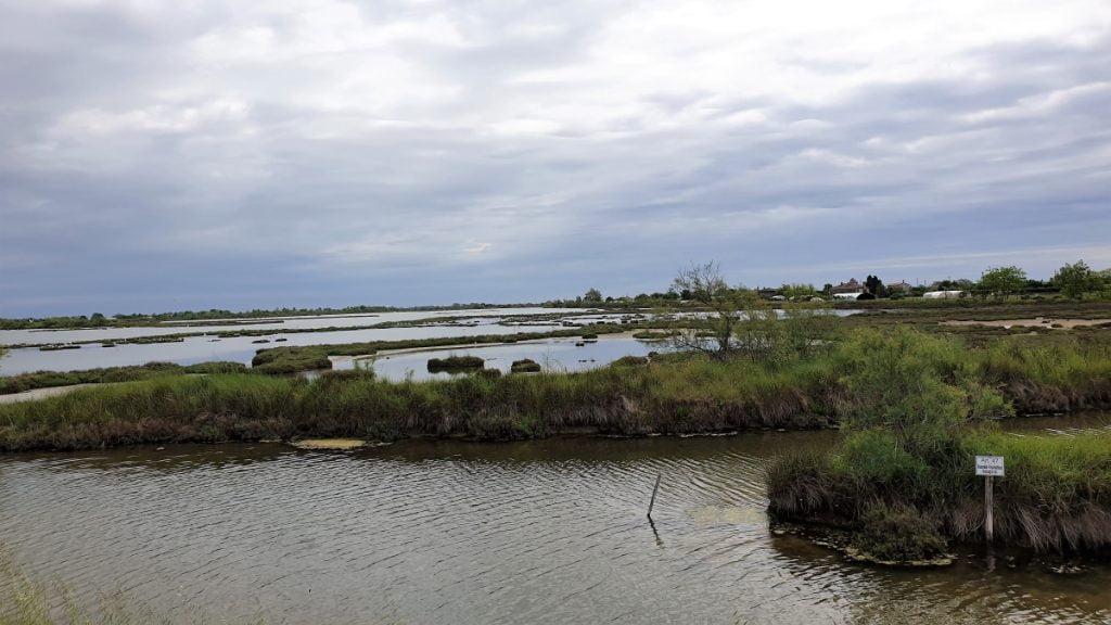 barene-laguna-venezia